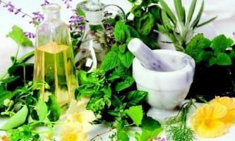 Використання ниркового чаю в боротьбі з хворобами