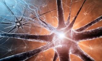 Яке впливає нікотин на нервову систему?