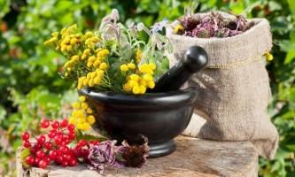 Лікування травами для нирок