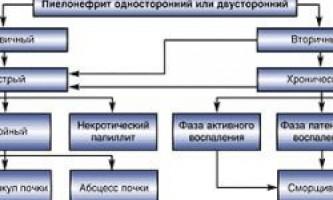 Сутність хронічного пієлонефриту і його лікування