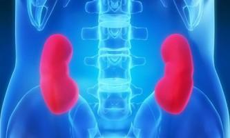 Запалення нирок: способи лікування народними засобами