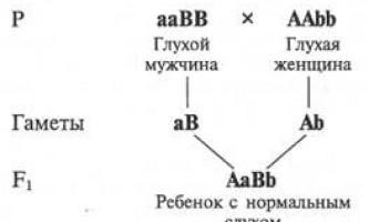 Взаємодія генів